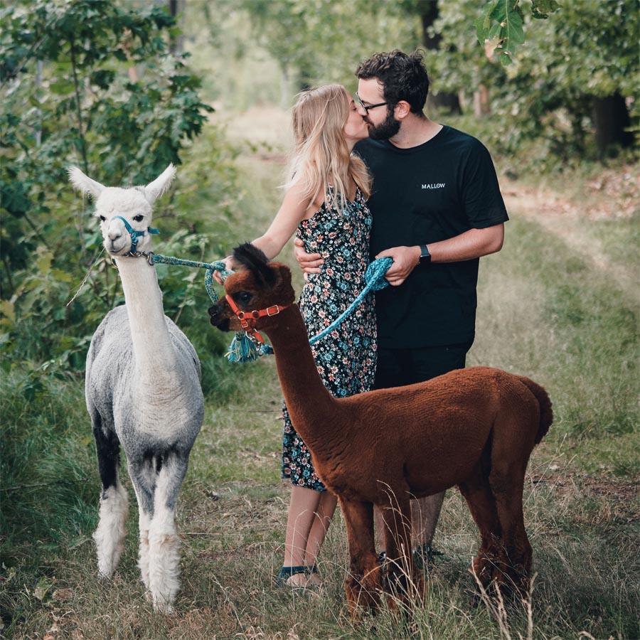Fotoshooting mit Alpakas in Moosheim